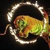 Цирки в Тугулыме